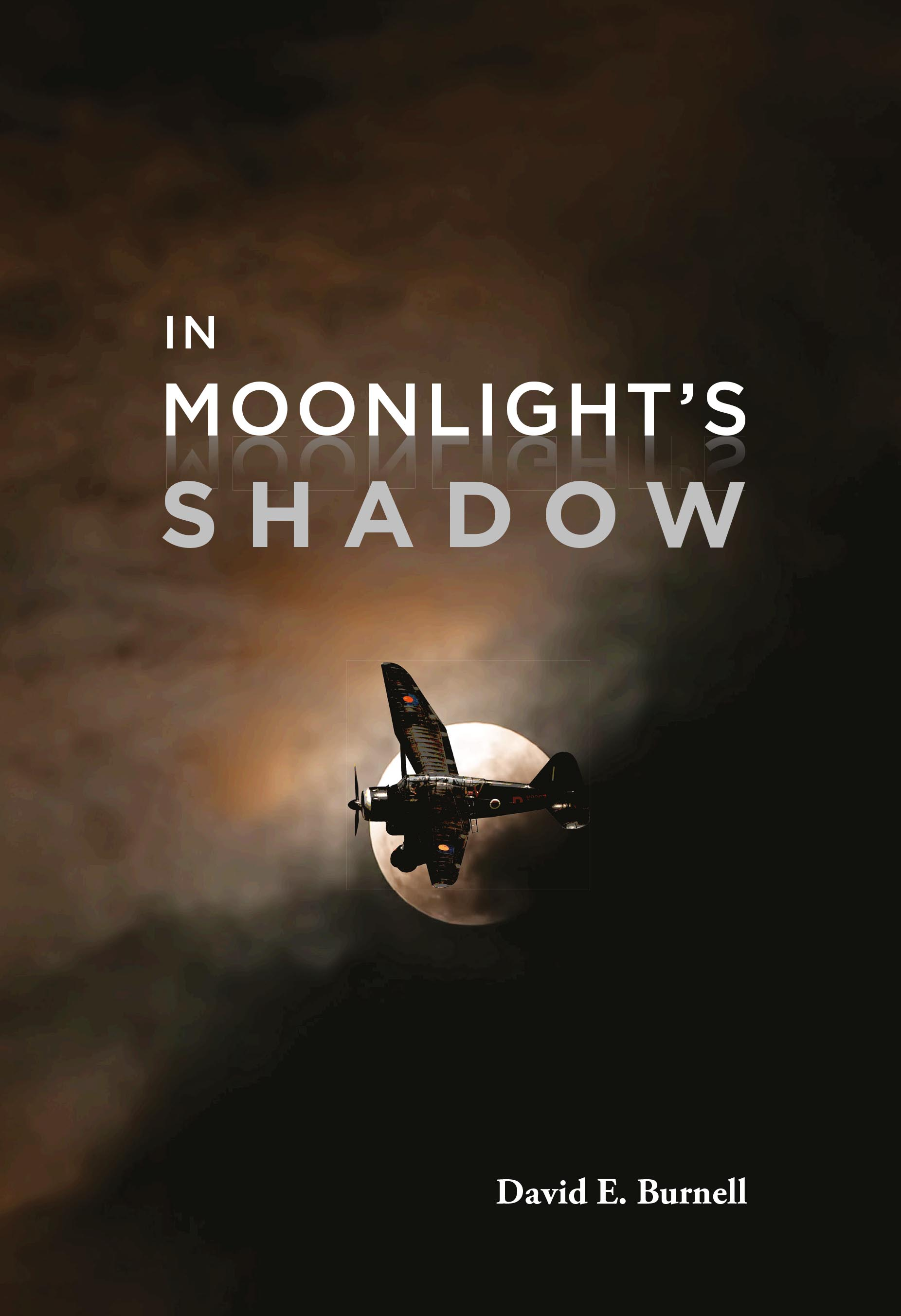 In Moonlight's Shadow front cover